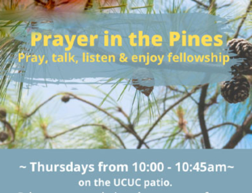 Prayer in the Pines
